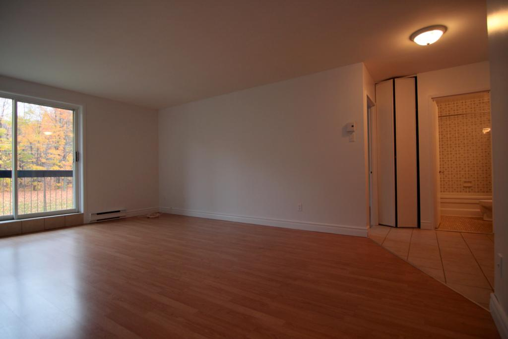 appartement-granby-125-135-st-michel-salon.jpg